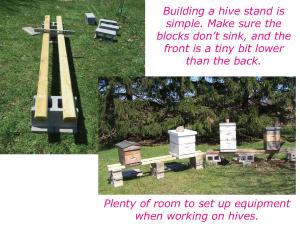 Bee Yards - BEEKeeping: Your First Three Years