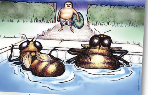 Water is critical at home so your bees don't find the neighbor's pool.