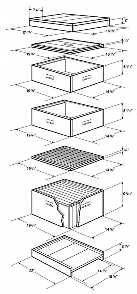 This expanded hive view shows hive components that are used in the typical beehive. If building hive equipment at home, it is important that standard measurements be used.
