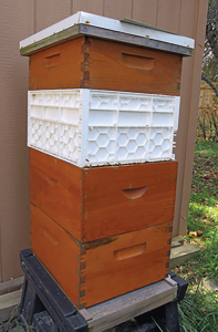 """This hive hasa 6⅝"""" superon top, a white plastic hive body is second, a dado joint hive body third and a standard box joint hive body on bottom. All of the equipment is from different manufactures, but is allpretty muchinterchangeable."""
