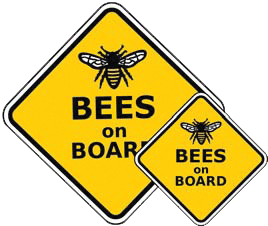 fa56a443d3b1 What s New - BEEKeeping  Your First Three Years